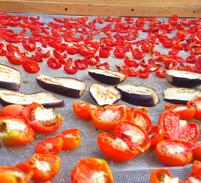 Como deshidratar tomates al sol