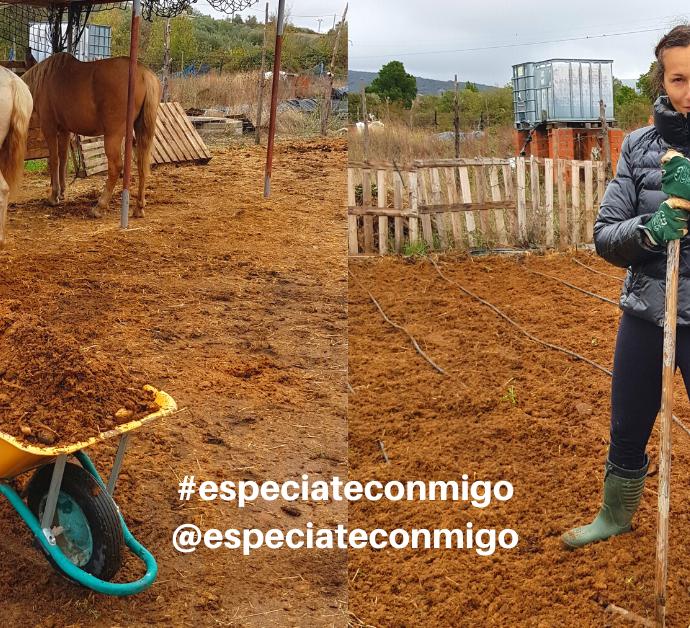 Como preparar el suelo para cultivar sin arar